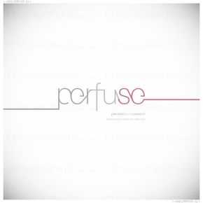 c3d16_PERFUSE (1)_web